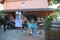 helferfest_auf_dem_boettchehof_in_schallstadt_07072012_12_20120926_1440341303