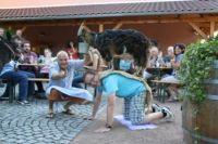 helferfest_auf_dem_boettchehof_in_schallstadt_07072012_13_20120926_2076021906