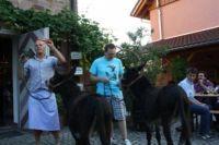 helferfest_auf_dem_boettchehof_in_schallstadt_07072012_8_20120926_1231969825