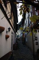 2015-10-31_Aausflug_Gengenbach_und_Hex_von_Dasenstein_25